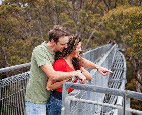 Valley of the Giants Tree Top Walk - Accommodation Brunswick Heads