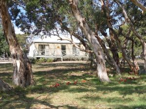 Wenton Farm Holiday Cottages - Accommodation Brunswick Heads