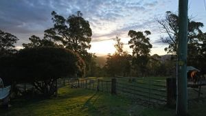 Glengarry farm stay BnB - Accommodation Brunswick Heads